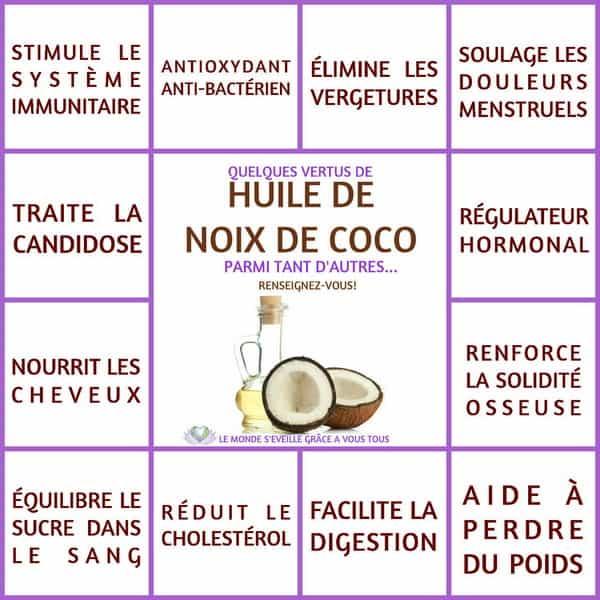 L'huile de coco serait-elle nocive pour notre santé ? Enquête sur cette rumeur confuse.