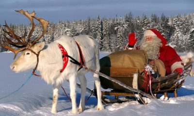 C'est bientôt Noël, passez de bonnes fêtes !