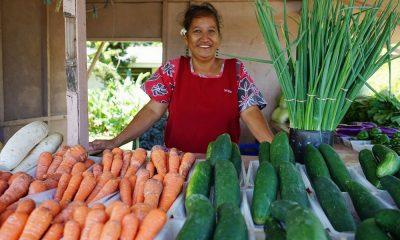Vivre plus longtemps grâce à un meilleur régime alimentaire