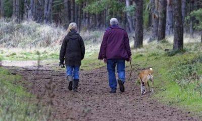 Un animal de compagnie permet aux seniors de vivre plus longtemps en santé