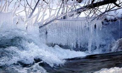 L'eau froide possède plusieurs vertus souvent méconnues -notamment pour les seniors.